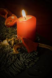 QuickAudio wünscht frohe Weihnachten