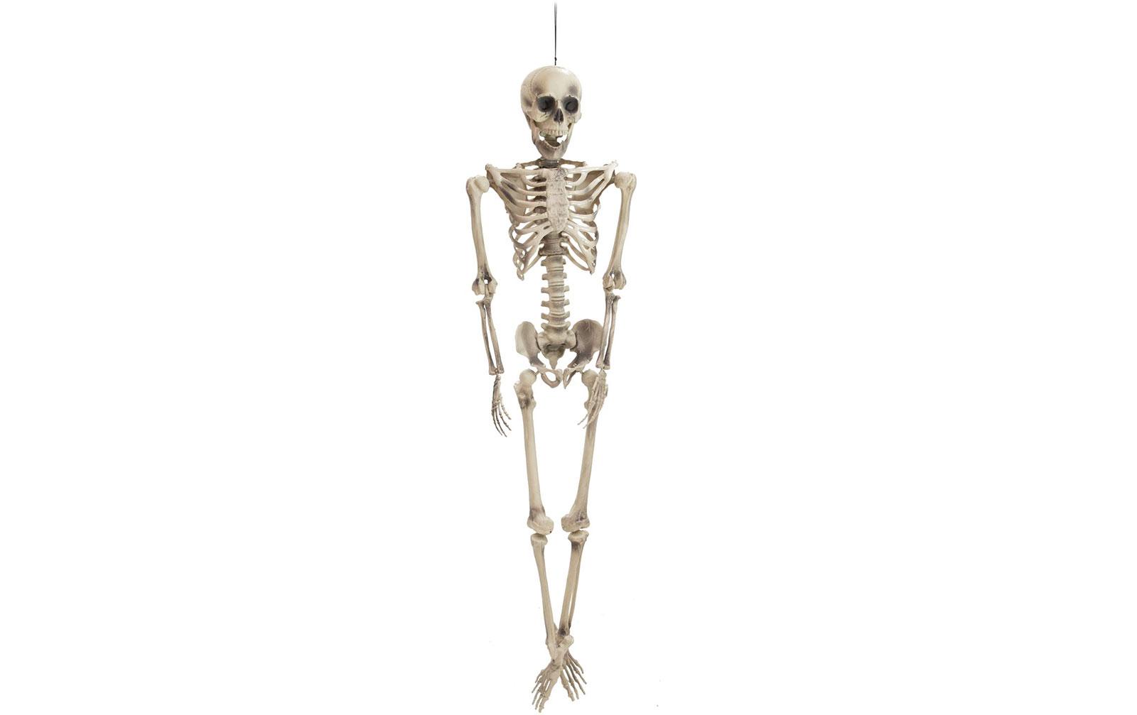 europalms-halloween-figur-skelett