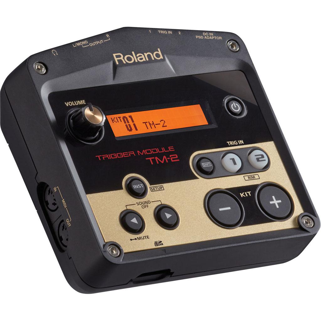 roland-tm-2
