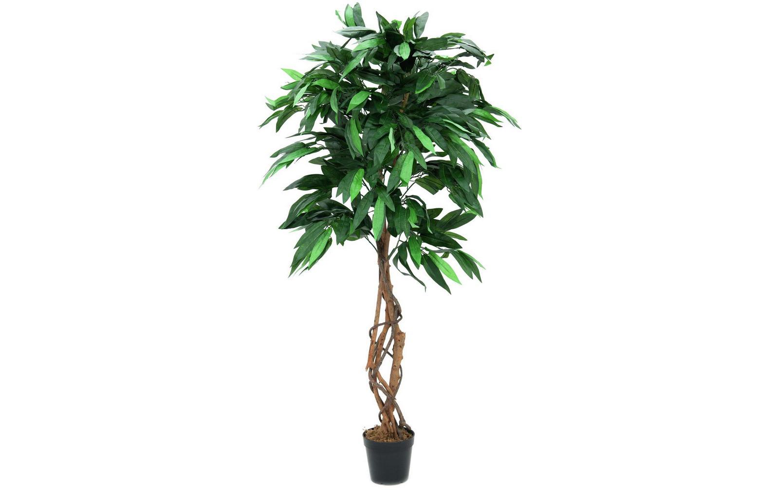 europalms-dschungelbaum-mango-150cm-kunststoffpflanze