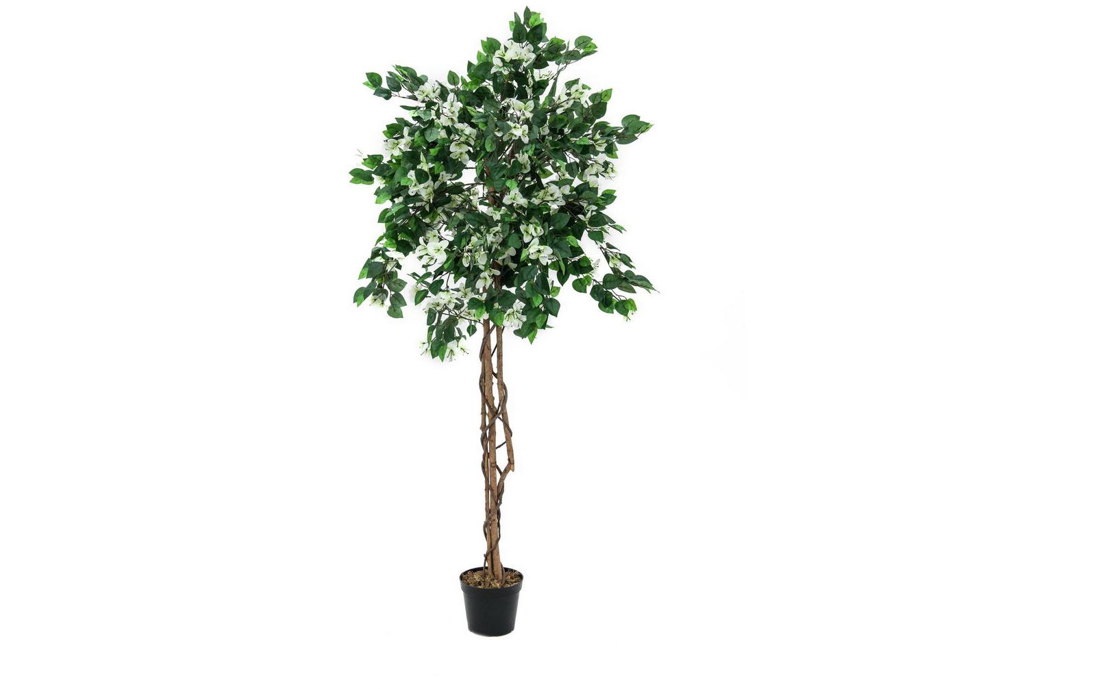 europalms-bougainvillea-weiay-150cm-kunststoffpflanze