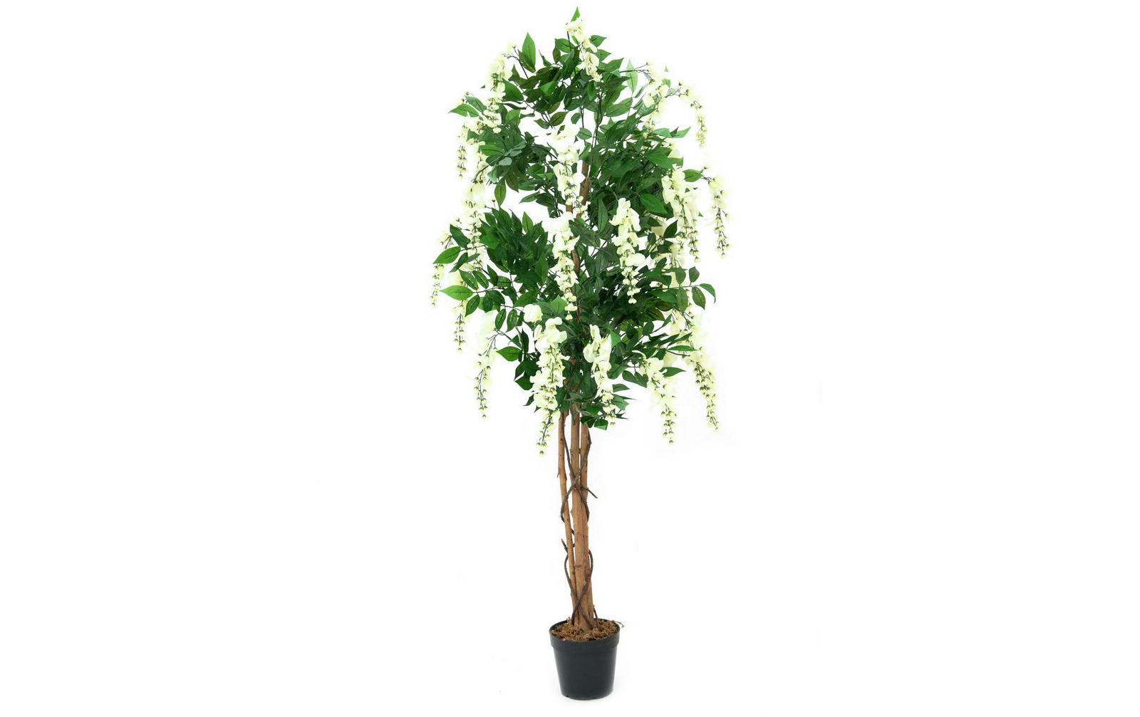 europalms-goldregenbaum-weiay-150cm-kunststoffpflanze