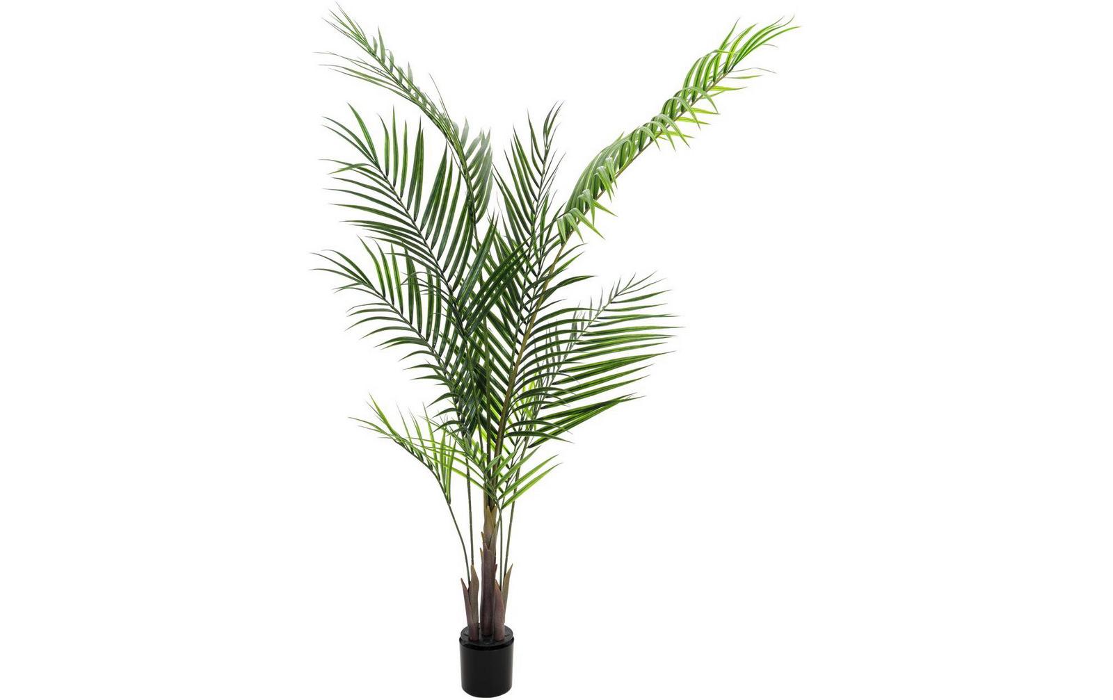 europalms-groayblatt-areca-165cm-kunststoffpflanze