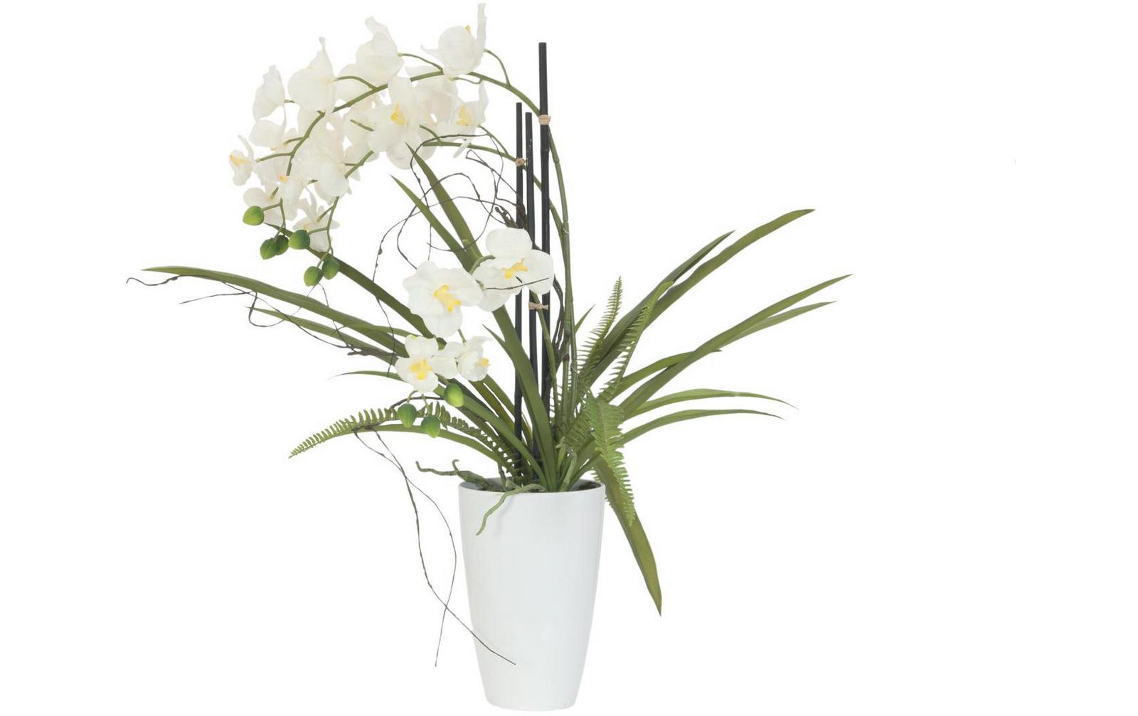 europalms-orchideen-arrangement-2-kunststoffpflanze