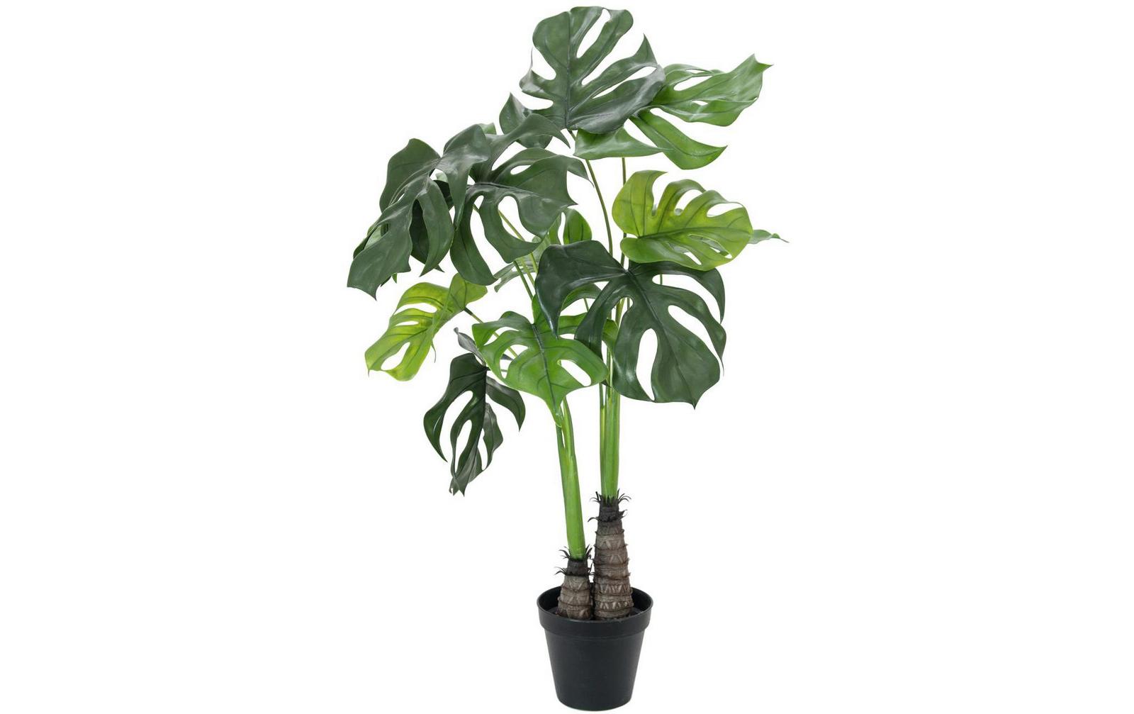 europalms-monstera-deliciosa-90cm-kunststoffpflanze