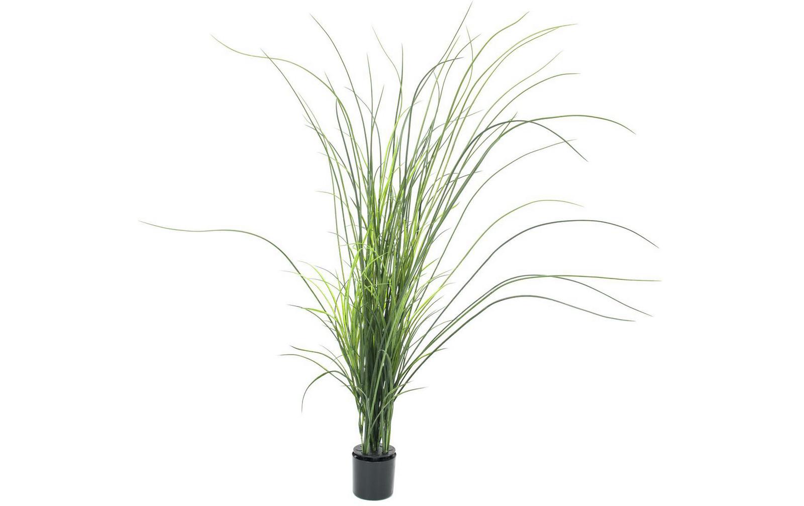 europalms-schilfgras-145cm-kunststoffpflanze