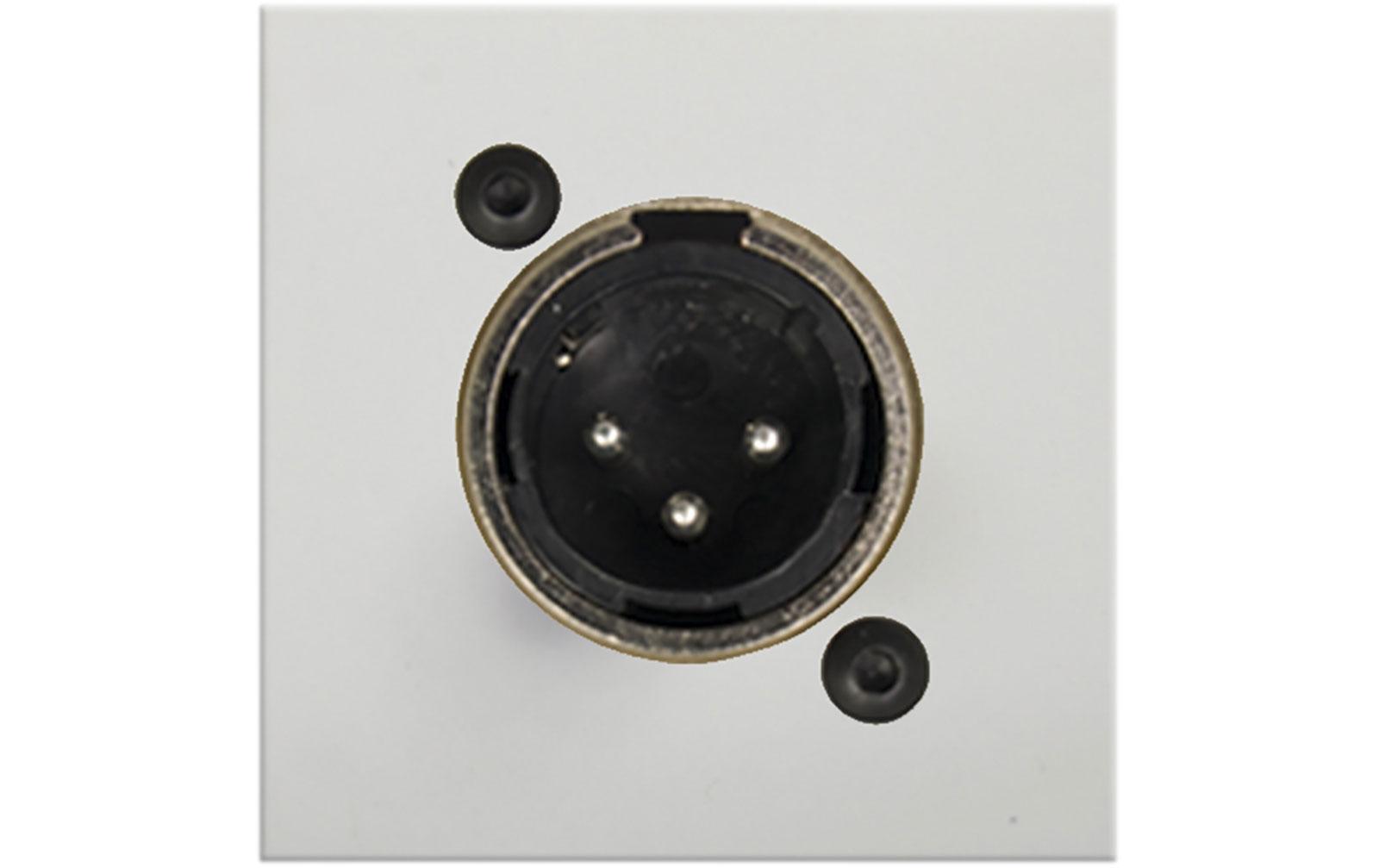 audac-cp-45-xlmsw-anschlussplatte-mit-xlr-male-buchse-weiss-45-x-45-mm