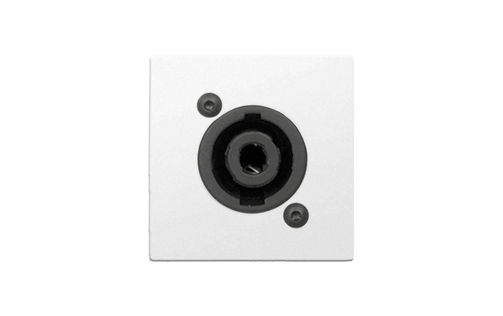 audac-cp-45-spesw-anschlussplatte-mit-lautsprecher-buchse-weiay