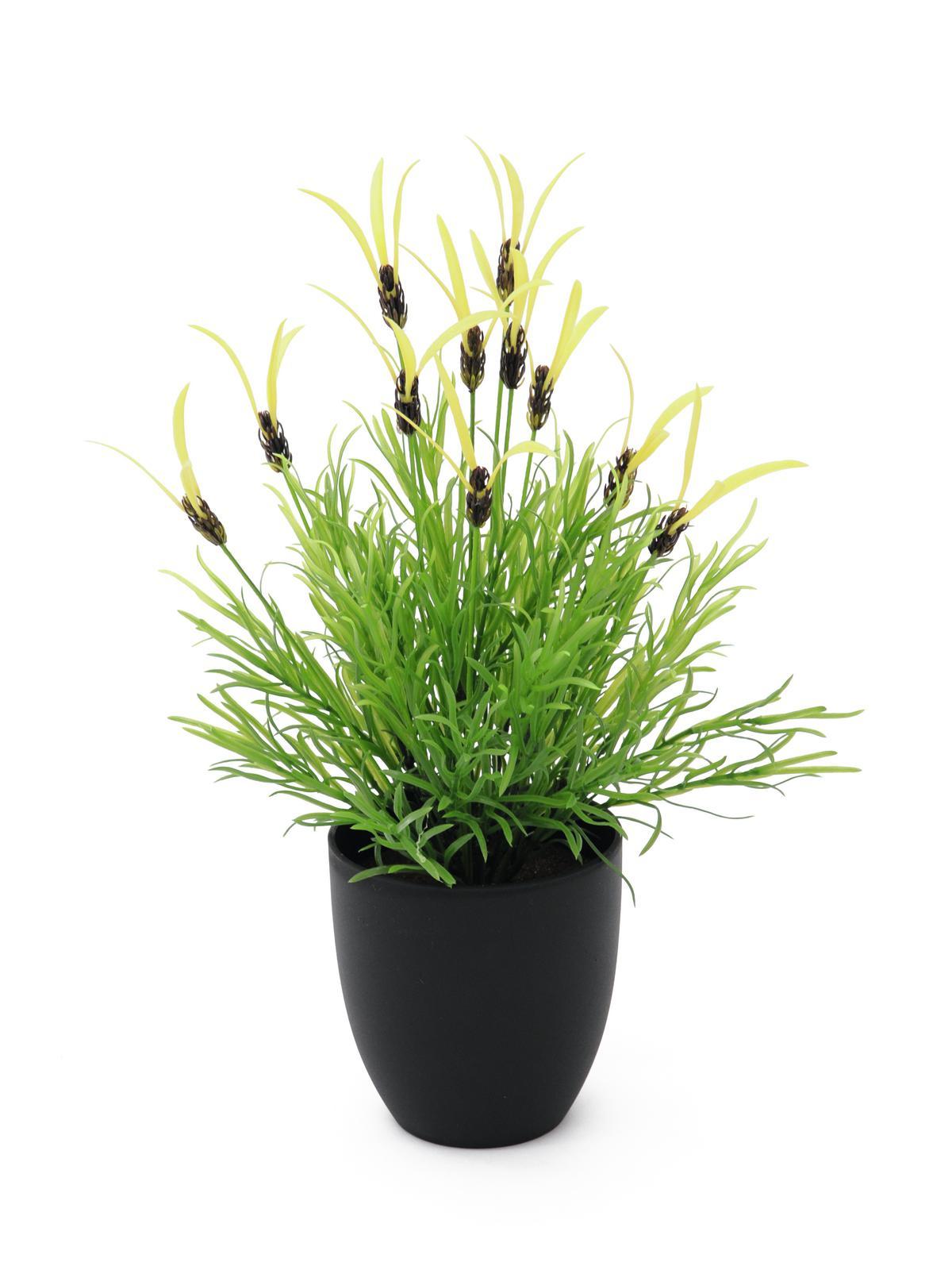 europalms-federlattich-40cm-kunststoffpflanze