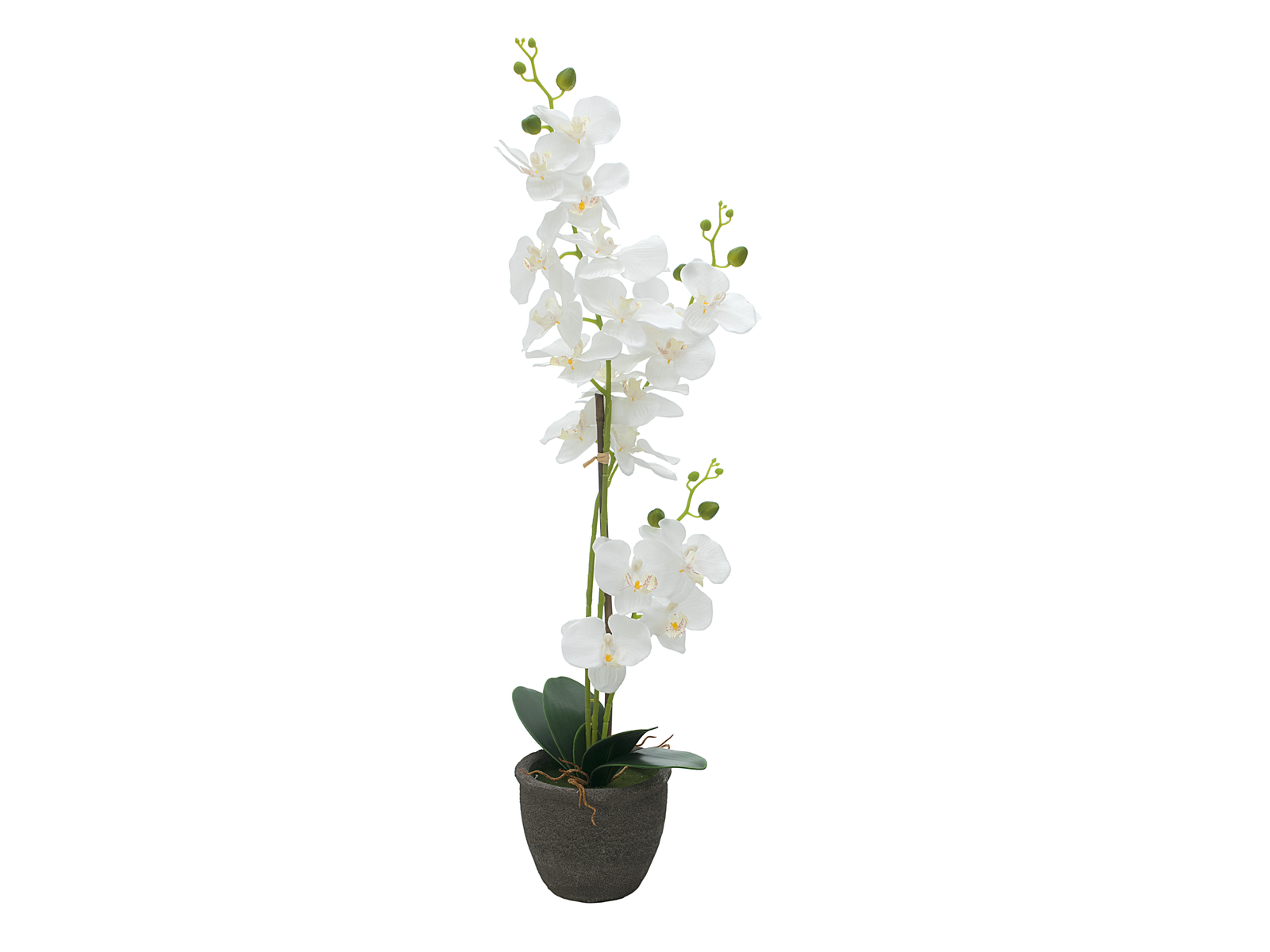 europalms-orchidee-kunstpflanze-weiay-65cm
