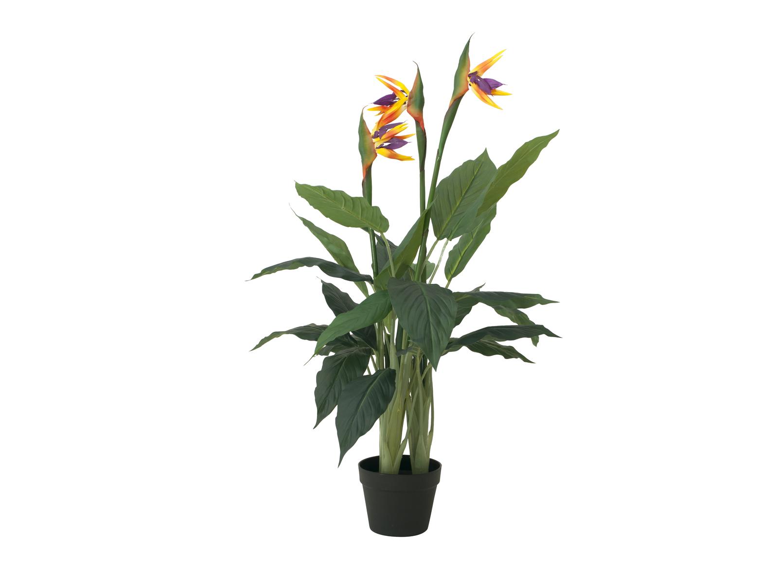 europalms-strelizie-kunstpflanze-90cm