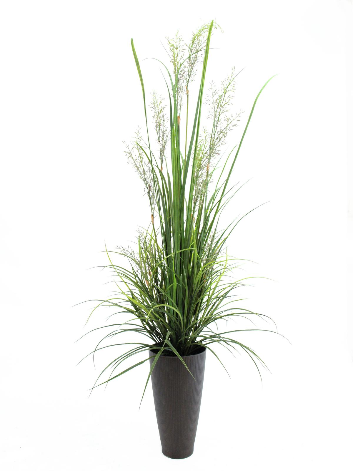 europalms-schilfgras-april-175cm-kunststoffpflanze, 148.50 EUR @ music-and-more-store