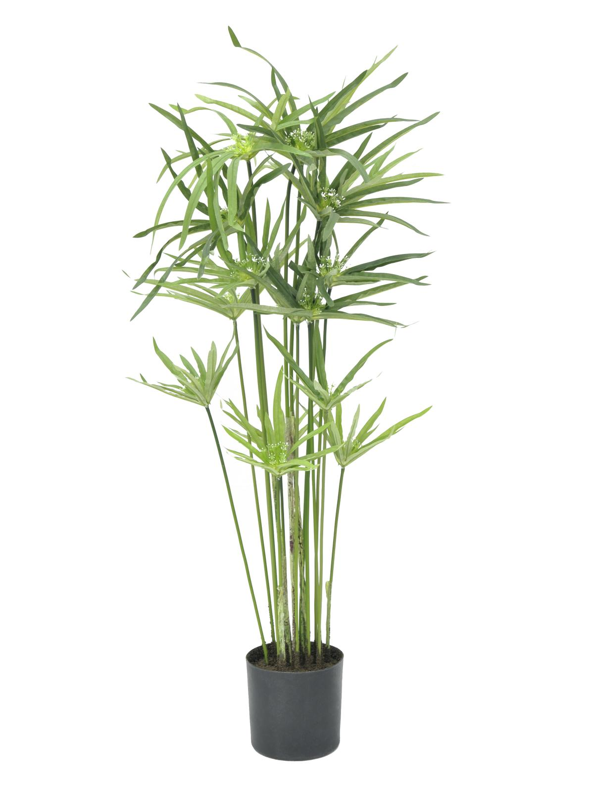 europalms-zyperngras-76cm-kunststoffpflanze