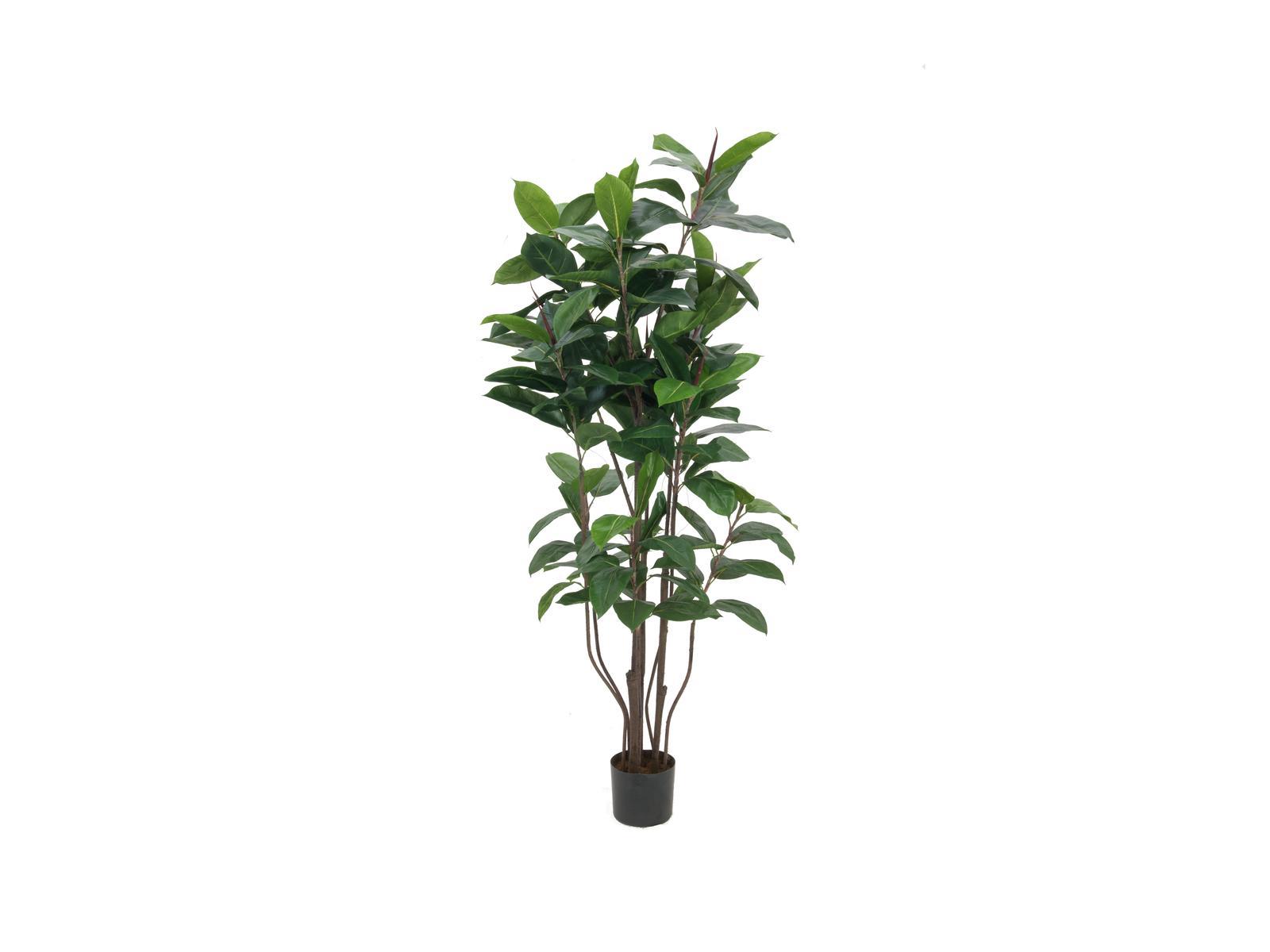europalms-gummibaum-150cm-kunststoffpflanze