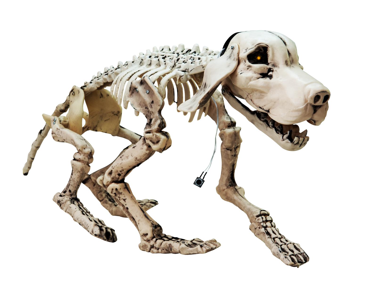europalms-halloween-hundeskelett-71x40x25cm